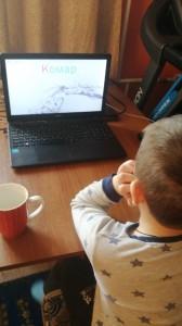 Ивушкин Слава продолжает изучать тему насекомые