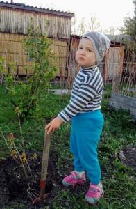 Лысенко Андрей Сад Памяти